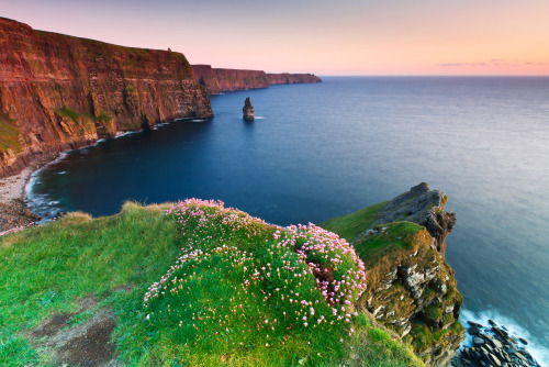 The Cliffs of Moher at sunset. Clare, Ireland.