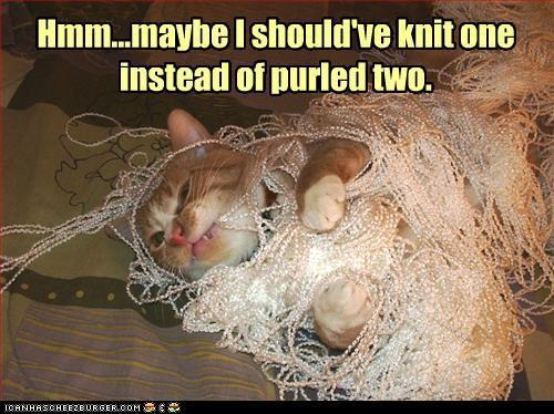 bahahahhahaha… and this is why I don't have cats with fiber interests.