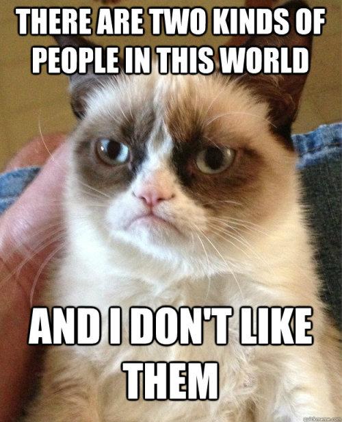 Grumpy cat - you make my day.