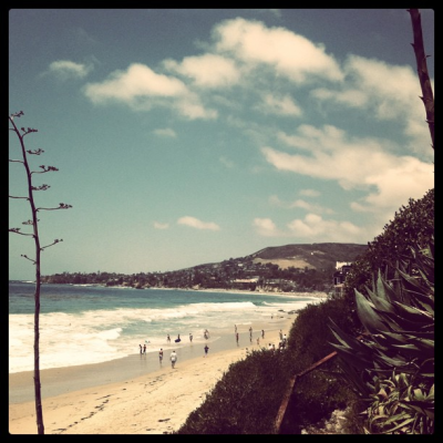 The coast along Laguna Beach is a great place to take photographs of the ocean, coast, vegetation, etc because it is pretty uncrowded. Especially during the week.