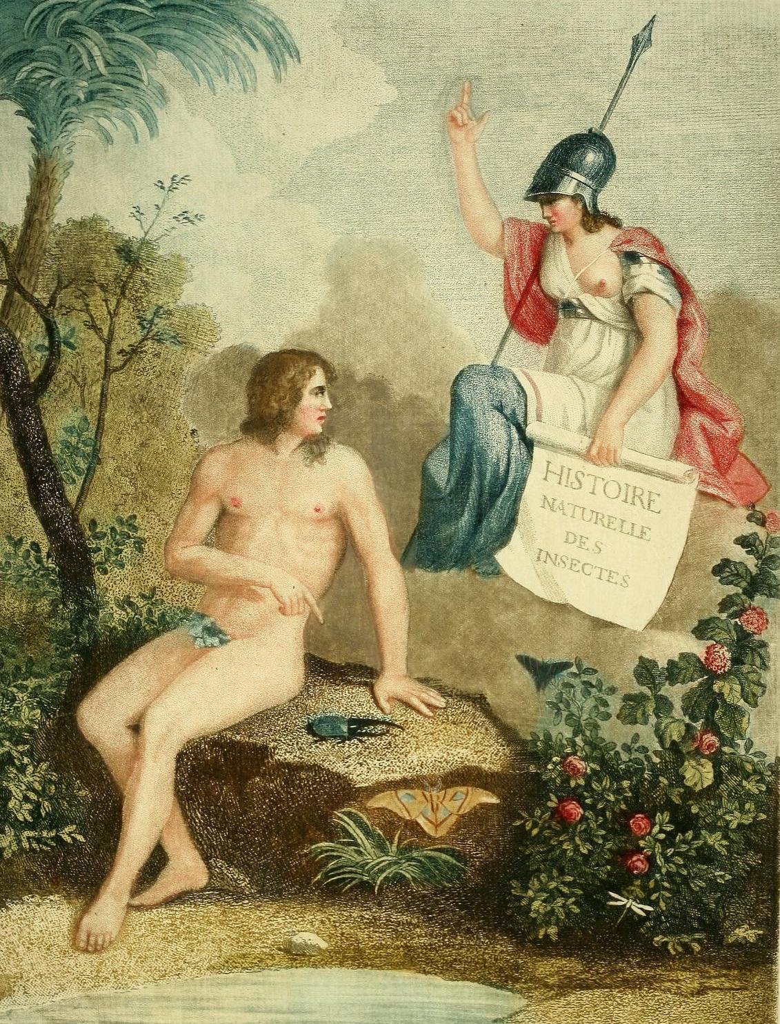biomedicalephemera:  The Naming of Beasts: Adam, in the Garden of Eden An angel holds a scroll with the title of the book and points toward Heaven, as Adam points toward a Hercules beetle (Dynastes hercules). An Atlas moth (Attacus atlas) rests on the side of the rock Adam sits upon, and a Pipevine swallowtail butterfly (Battus philenor) and white dragonfly (subfamily Anisoptera) are depicted aside the scene. Entomologie, ou, Histoire Naturelle des Insects: Coleoptera. Antoine Guilame Olivier, 1808. [Fourth edition, original publication date 1798.]