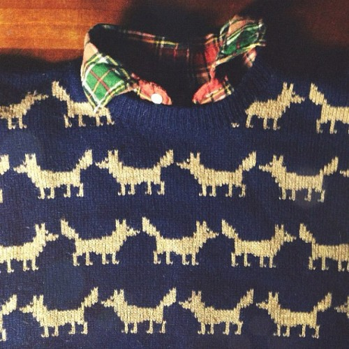 prettyworld: Oh my goodness. Fox sweater!