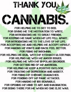 welovetheherb:  Thank You Cannabis  THANK YOU SO MUCH MARY. much love.