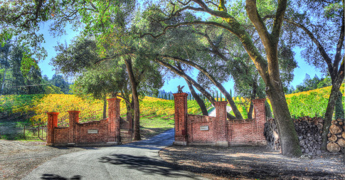 Week 45: Castello di Amorosa (Calistoga, CA) on Flickr.