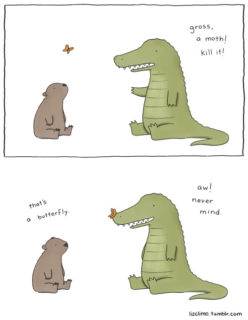 lizclimo:  poor moths