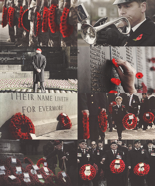 sansatullying:  Remembrance Day - Lest We Forget