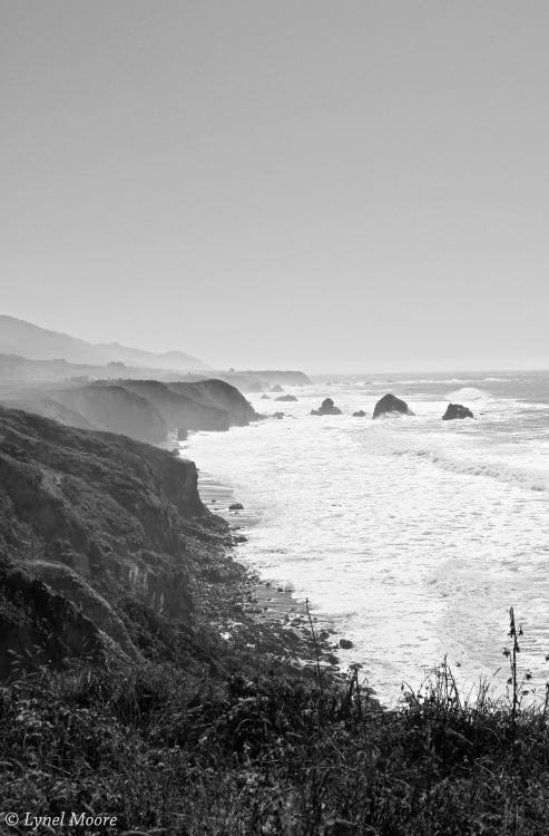 thelittlefrenchbullblog:  Mendocino Coast