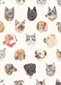 fusible:  Pet Portraits! (by Sarah McNeil)