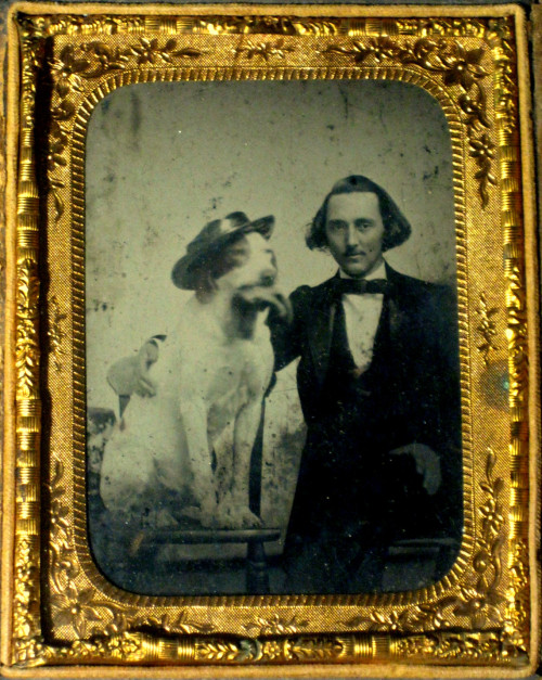 ca. 1850-60's, [ambrotype portrait of a smirking gentleman with his dog, wearing a hat and chewing on a glove] via Ebay