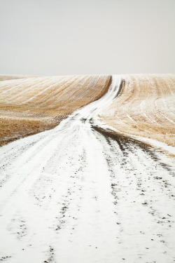 clubmonaco:  Snowy road to nowhere.