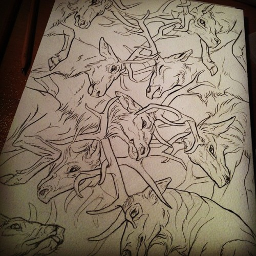Last lot of deer I'm drawing this year I think haha. Now for colour.