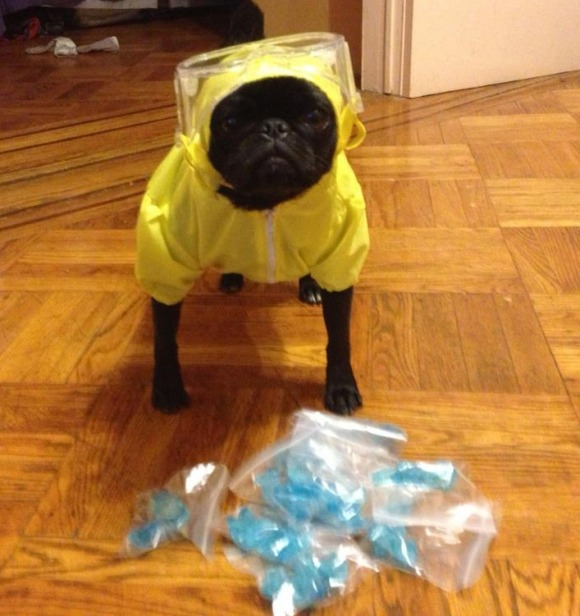 Finally, a Heisenberg costume that I can get excited about.
