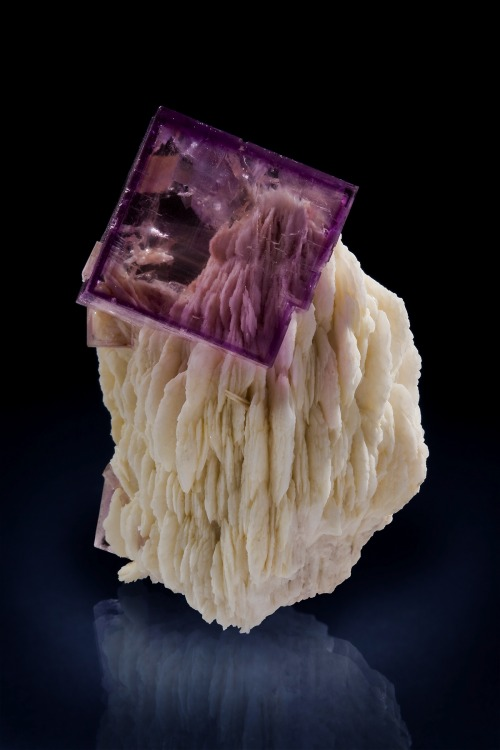bijoux-et-mineraux:  Single Fluorite Crystal on Barite