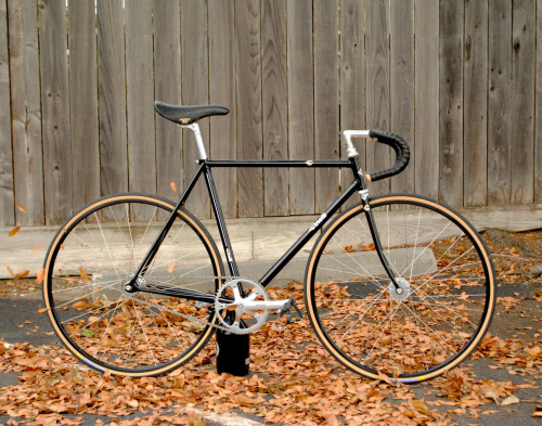 bici713:  MIchael's Cinelli Super Pista, Bici custom