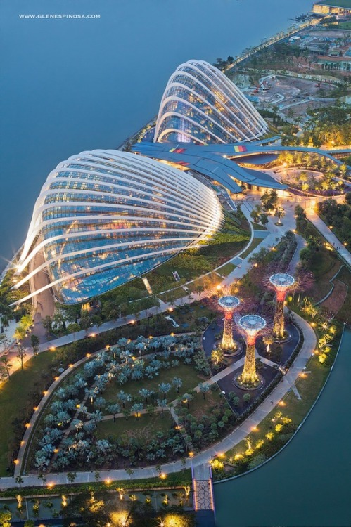cabbagerose:  gardens by the bay, singapore via: yarazitronenblatt