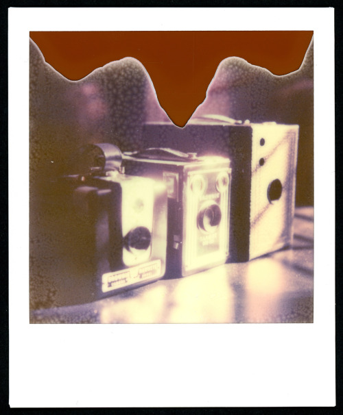 Title: Vintage Box Cameras Camera: Polaroid SX 70 Film: Impossible's PX680 Color Shade