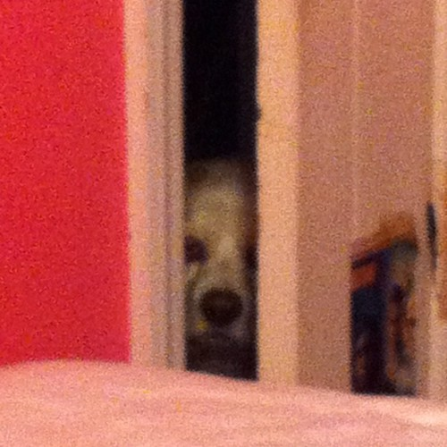 Ever feel like you're being watched?