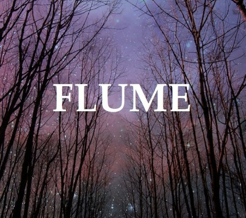 oystermag:  Congratulations Flume — he's #1 on iTunes (he beat One Direction)! Listen to the mix he made us.  He beat them, cause he's way better than 'em. Truth.