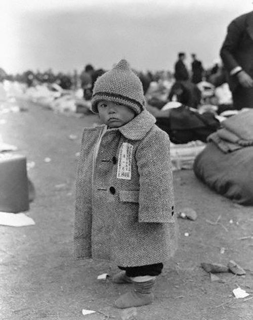 abustaif:  Japanese refugees after WWII