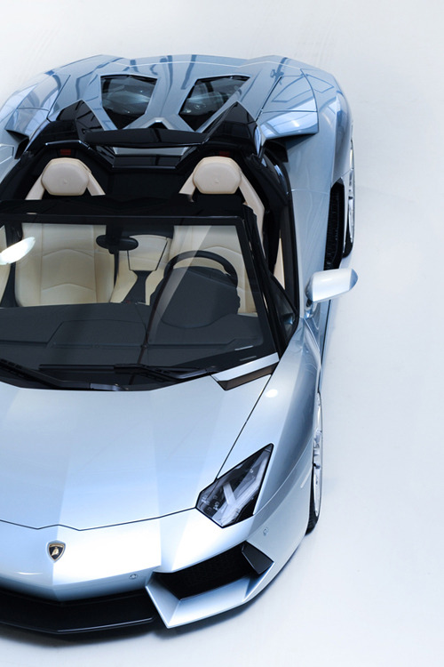 fuckyeahthebetterlife:  Ladies and Gentlemen,the all new Lamborghini Aventador Roadster