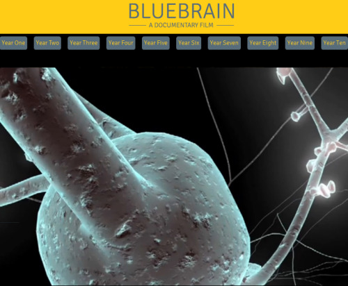 Bluebrain is a ten-year documentary film-in-the-making about the twenty-first century race to reverse engineer the human brain. Such is the goal of The Blue Brain Project, based in Lausanne, Switzerland, one of the highest-profile neuroscience projects in the world today. Blue Brain's audacious leader is Henry Markram, who publicly announced in 2009 that he seeks to reverse-engineer a human brain with digital simulations of all the physical properties of every neuron, powered by IBM supercomputers, by 2020. Director Noah Hutton began shooting in 2009, focusing exclusively on Markram's Blue Brain Project— but starting in Year 3, the scope of the film has expanded to include the work of other prominent projects and labs seeking to understand the brain through different methods, including Sebastian Seung of M.I.T., Rafael Yuste of Columbia University, and Jeff Lichtman of Harvard University. The film will continue to survey the work of other projects and their leaders in years to come, with yearly shorts released ahead of a full re-edit into a documentary feature due for completion in 2020. As the Blue Brain simulation is built over the course of this decade, so too will this documentary about a historic quest in human history. Through yearly updates from Blue Brain and other prominent scientists, philosophers, and ethicists, Bluebrain will track a crucial decade in the human mind's relentless drive to understand itself.