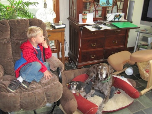 Chillin with his pack, Spiderman and the Big Dog. Mo's the little one.