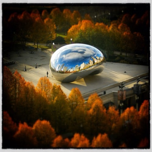 chicagobusiness:  #fall #thebean #chicago Shot by Crain's photographer Steve Serio  Gorgeous shot.
