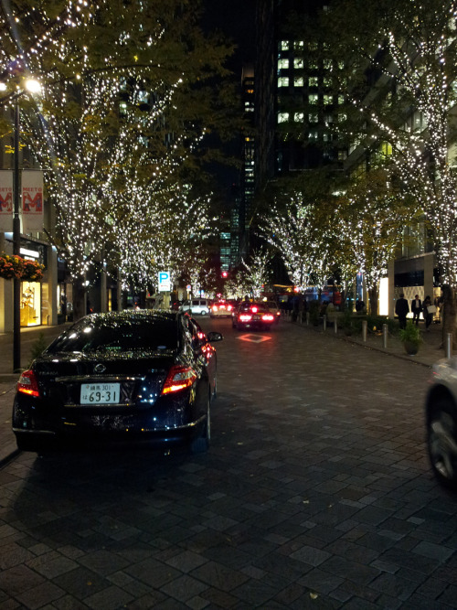 I know…it's early but even Tokyo is getting ready for the holidays. So beautiful!