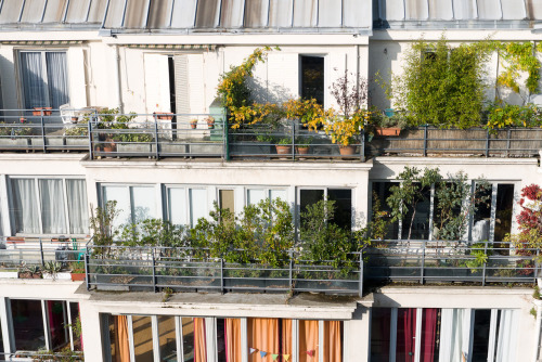 Detail of apartments in Paris.