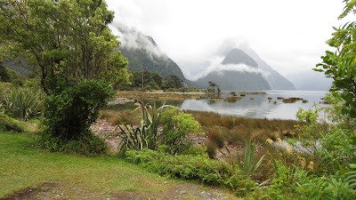The beautiful Milford Sounds New Zealnd (via Nomadic Daze: Milford Sounds to Kingston)