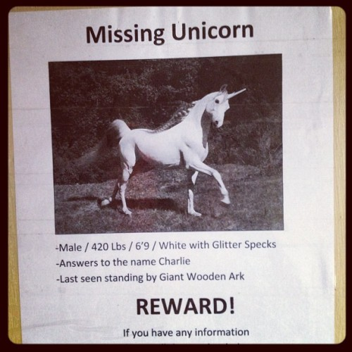 Well apparently someone's unicorn has gone missing @ the Coffee shop..