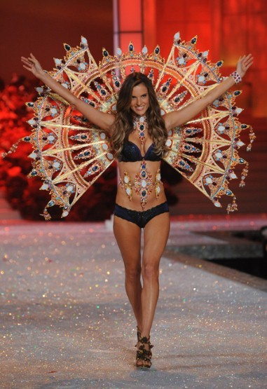 Victoria's Secret Fashion Show 2012! The show never disappoints.