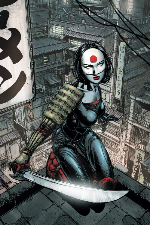 David Finch's cover to Katana #1, out in February.