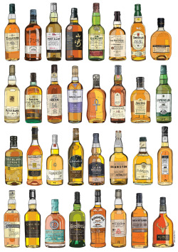 daniloagutoli:  Single Malt Collection - danilo agutoli Prints available on my Society6 website | tumblr | behance | flickr |