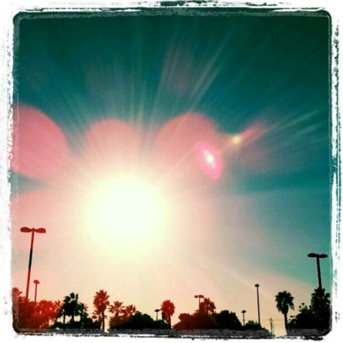 Everyday is a Blessing :-) #Sun #LosAngeles #PalmTrees #LensFlare #Positive #Energy #Gratitude #ILoveLA #ThePrimeSuspects #TPSvision