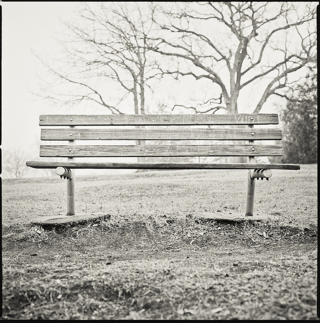 Park Bench on Flickr.