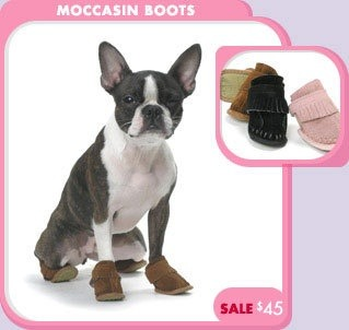 dog moccasins, cause what else do you really ever need?
