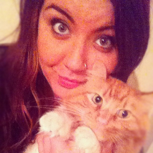 my loviekin boo boo child 🐱❤ #kitty #oliver #meow #me