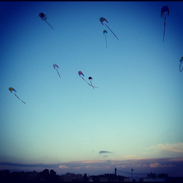 Kite flying at the Citadel. #jordanangels