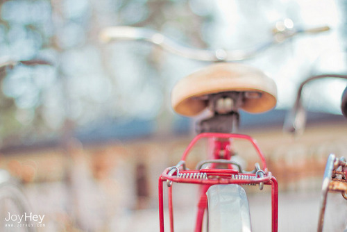 Cherry Bike by JoyHey on Flickr.