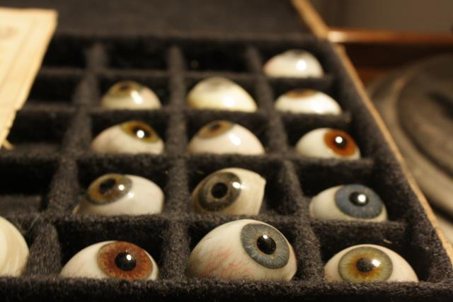 Glass eyes from the Science Museum