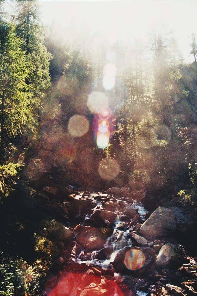 definitelydope:  lightfall (by Careless Edition)