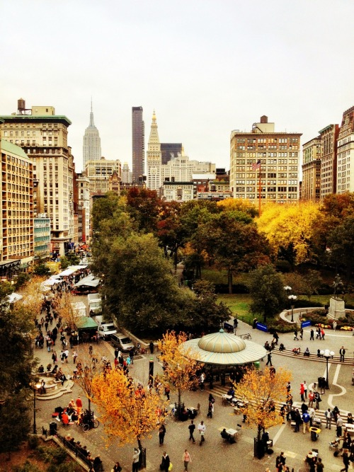 "nythroughthelens:  Autumn. New York City. Above Union Square. On cloudy days in autumn, the trees stick out from the ground below like paintbrushes heavy with memories of the sun's embrace. And the city, weary in preparation of shorter days, clamors to hold onto every last bit of color and light. —- I love this view of Union Square Park looking towards the Empire State Building and the beautiful skyscrapers in midtown Manhattan. It's particularly gorgeous in the autumn when the trees change color before descending gracefully to the ground. —- View this photo larger and on black on my Google Plus page —- Buy ""Autumn - New York City - Overlooking Union Square"" Posters and Prints here, View my store, email me, or ask for help."