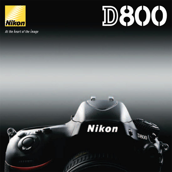 brands:  Nikon D800 on tumblr The Nikon D800 produces video so extraordinarily cinematic it can find beauty anywhere—even in a nightmare. To prove it, we invited critically acclaimed writer Guillermo Arriaga, writer of Babel, 21 Grams and Amores Perros, to team up with two-time Academy award winning cinematographer,Janusz Kaminski, the DP on Schindler's List, Saving Private Ryan and War Horse. The challenge? Push the limits of the ultimate movie-making HD-SLR to create a short movie as frightening as it is drop dead beautiful.  Interesting SLR camera moviemaking project by a couple of top moviemakers. As a Nikon user myself, I'm particularly interested in what the company is doing with kind of sponsored project.
