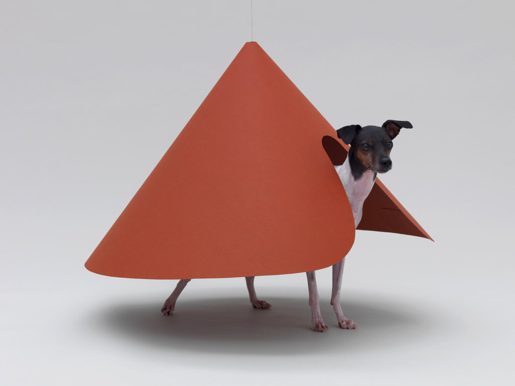Barkitecture. Check out this article on architecture for dogs!