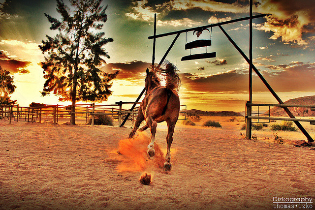 Freedom! HDR by Dizkography on Flickr.