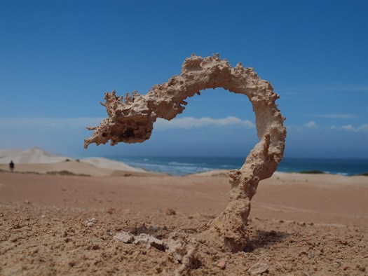 Sand struck by lightning.    Photo by Ken Smith, National Geographic