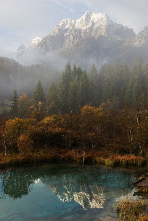 visitheworld:  Autumn reflections at Zelenci Spring, Slovenia (by RenatoG_rm).
