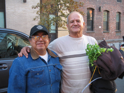 Manuel Zuniga, garden member, and Tony, friend of the neighborhood with some of our cilantro which he purchased for a small donation to the garden.
