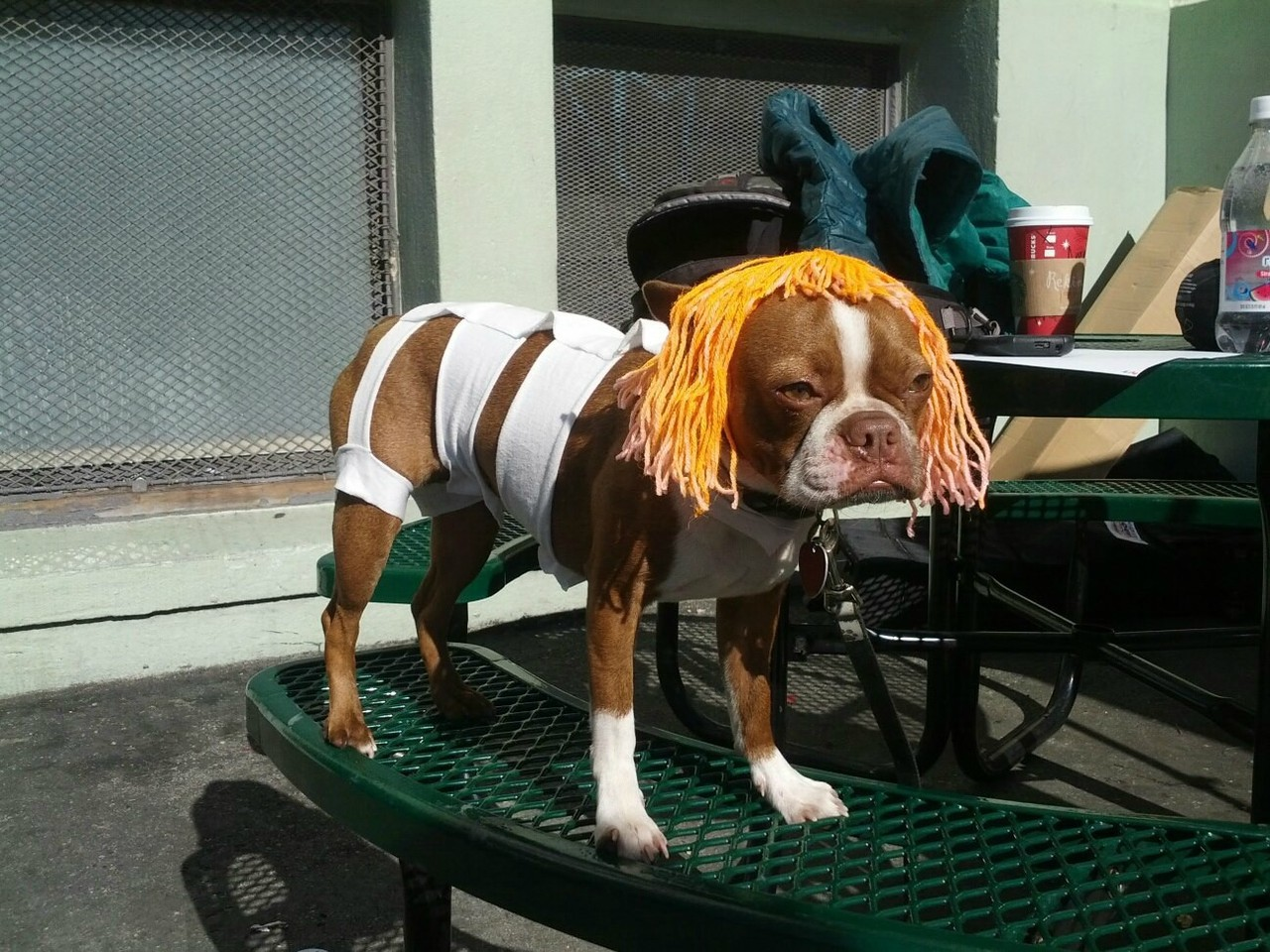 "Leeloo ""Bacon"" Multi-Pass (vía Reddit)"